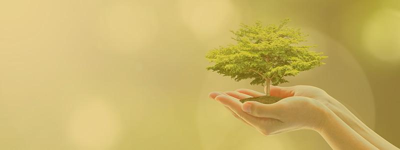 環境への取り組み イメージ